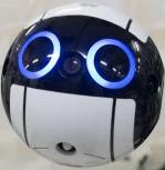 Wireline's Avatar